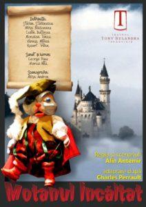 MOTANUL ÎNCĂLȚAT @ Teatrul Tony Bulandra - Sala Studio | Târgoviște | Județul Dâmbovița | România